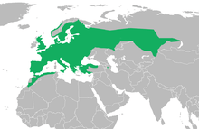 Distribution range of common toad