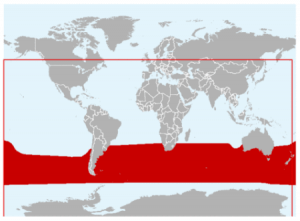 The geographical range of Wandering Albatross