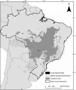 Distribution of Maned Wolf