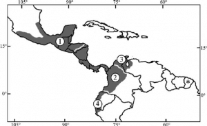 Distribution of Southern Tamandua