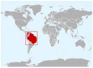 Distribution of bush dog